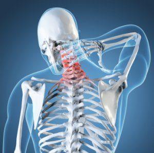 Shoulder Pain Skeleton