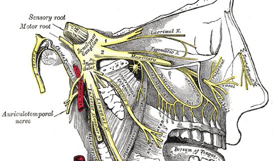 Trigeminal Neuralgia Colorado Pain Denver Golden