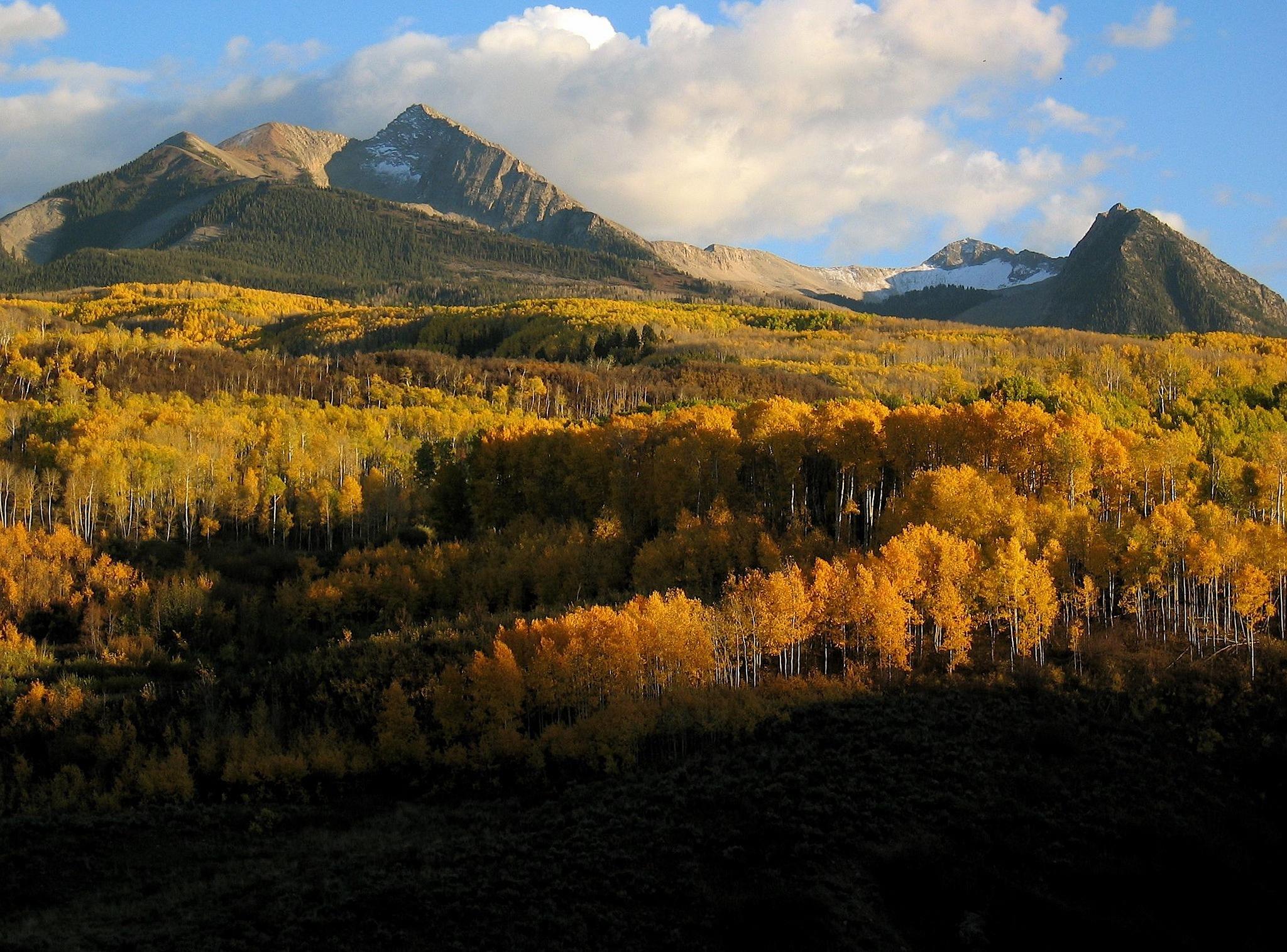 Colorado Pain October